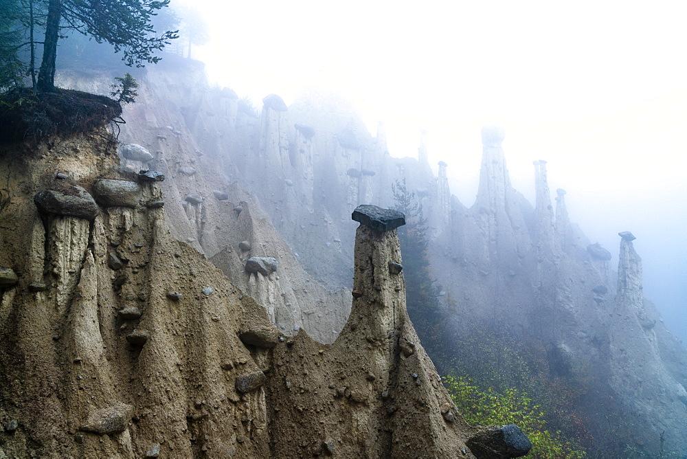 Fog over the Earth Pyramids, Perca (Percha), province of Bolzano, South Tyrol, Italy, Europe