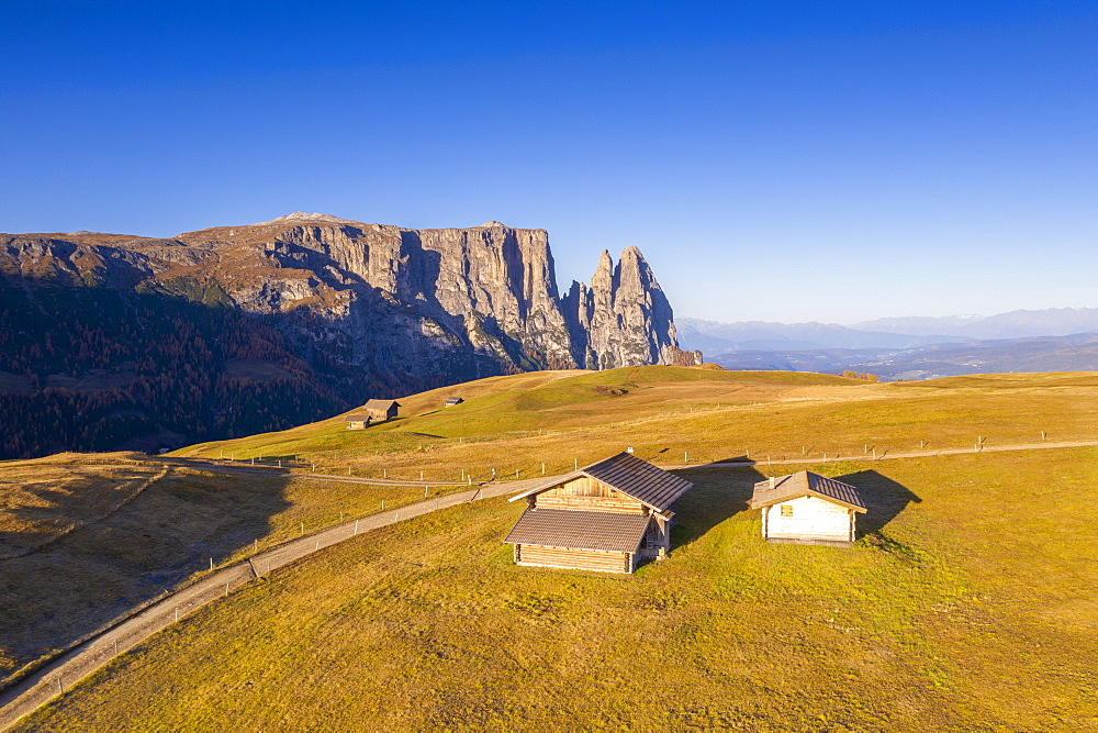 Aerial view by drone of sunrise on Alpe di Siusi (Seiser Alm) and Sciliar peaks in autumn, Dolomites, South Tyrol, Italy, Europe
