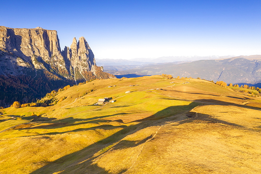 Aerial view by drone of autumn colors at Alpe di Siusi (Seiser Alm) and Sciliar peaks lit by sunrise, Dolomites, South Tyrol, Italy, Europe