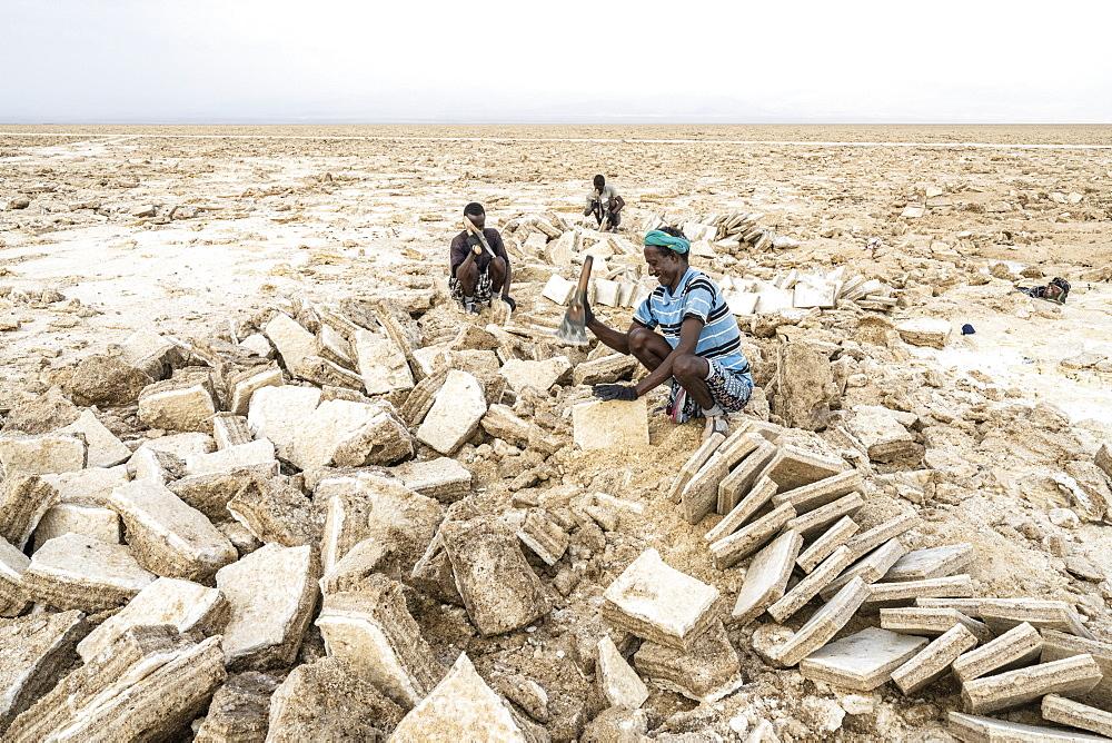 Miners working hard in the salt flat, Danakil Depression, Afar Region, Ethiopia, Africa