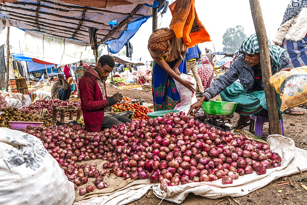 Man selling onions in Bati market, Amhara Region, Oromia, Ethiopia, Africa