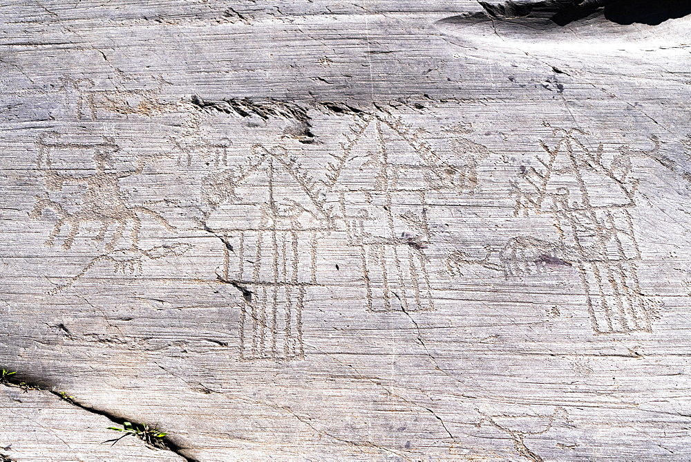Cammunian village with hut and barns or pantries engraved on rock 35, Naquane National Park, Valcamonica, Lombardy, Italy