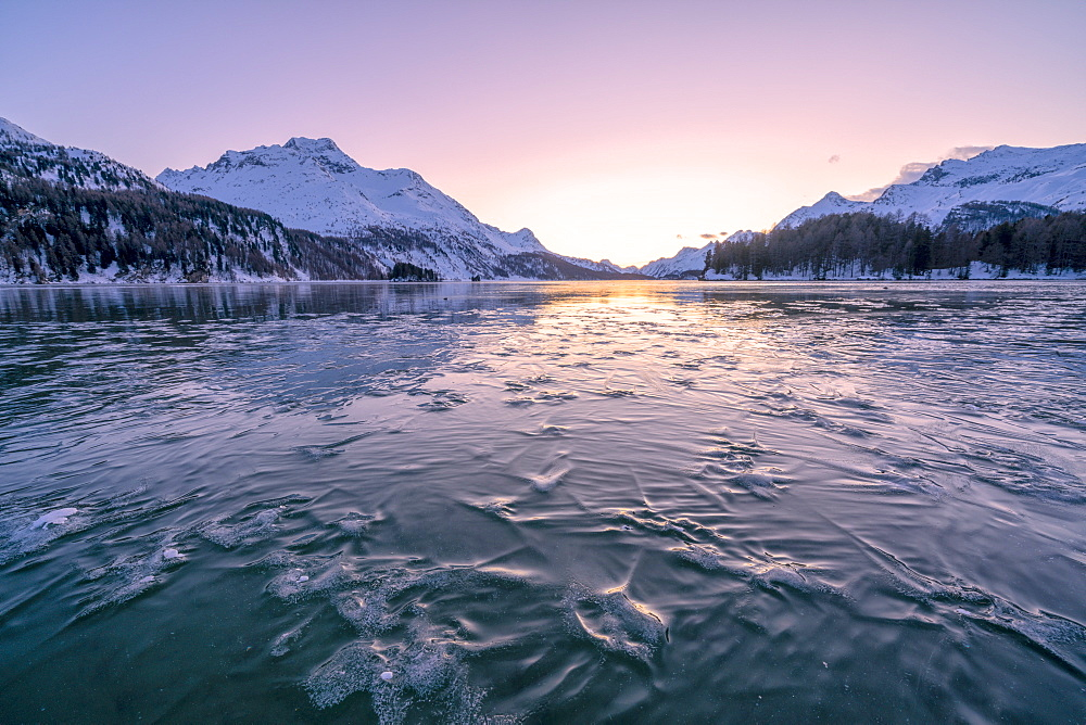 Tree branches trapped in ice under the frozen surface of Lake Sils at sunset, Engadine, Graubunden canton, Switzerland, Europe - 1179-4709
