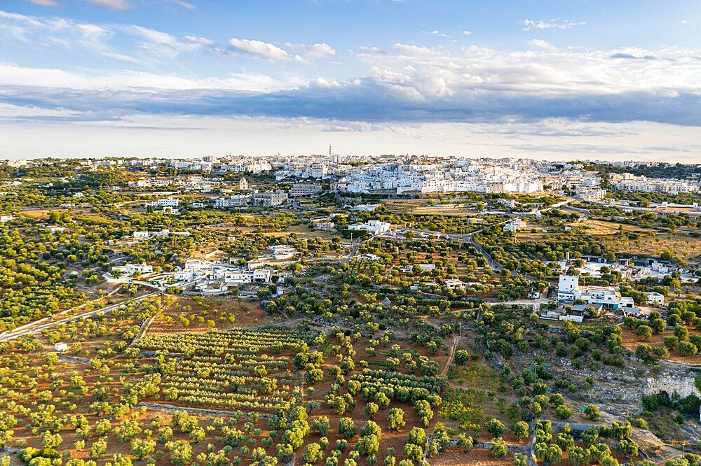 Aerial view of Ostuni old town surrounded by olive groves, province of Brindisi, Salento, Apulia, Italy, Europe - 1179-4998