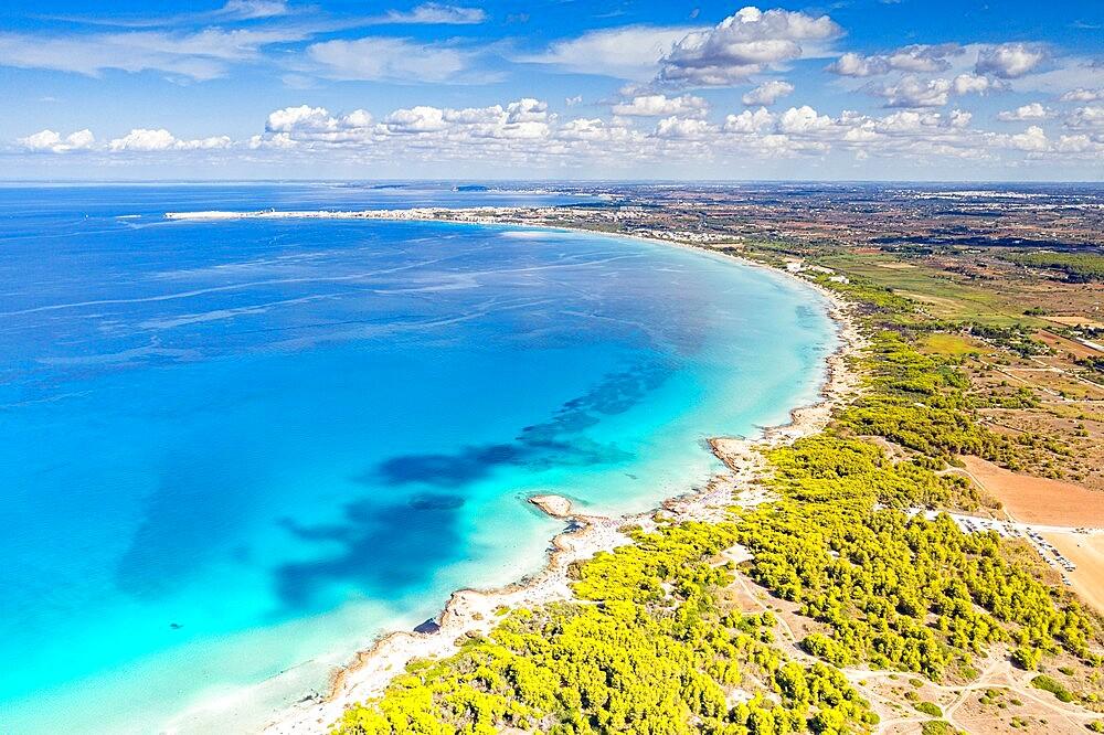Punta della Suina sand beach framed by Mediterranean pine trees, aerial view, Gallipoli, Lecce province, Salento, Apulia, Italy, Europe - 1179-5002