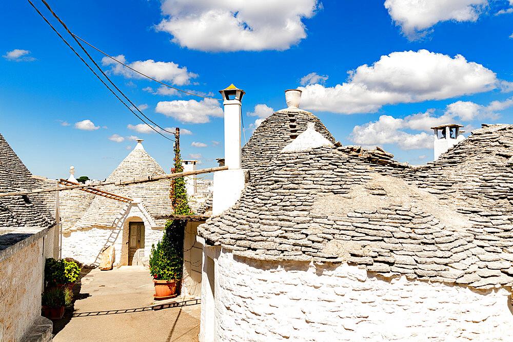 Traditional whitewashed Trulli houses, Alberobello, province of Bari, Apulia, Italy - 1179-5061