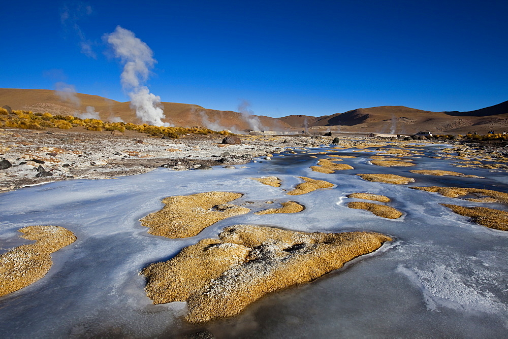 The El Tatio Geothermal Field, located in the Altiplano of northern Chile, South America