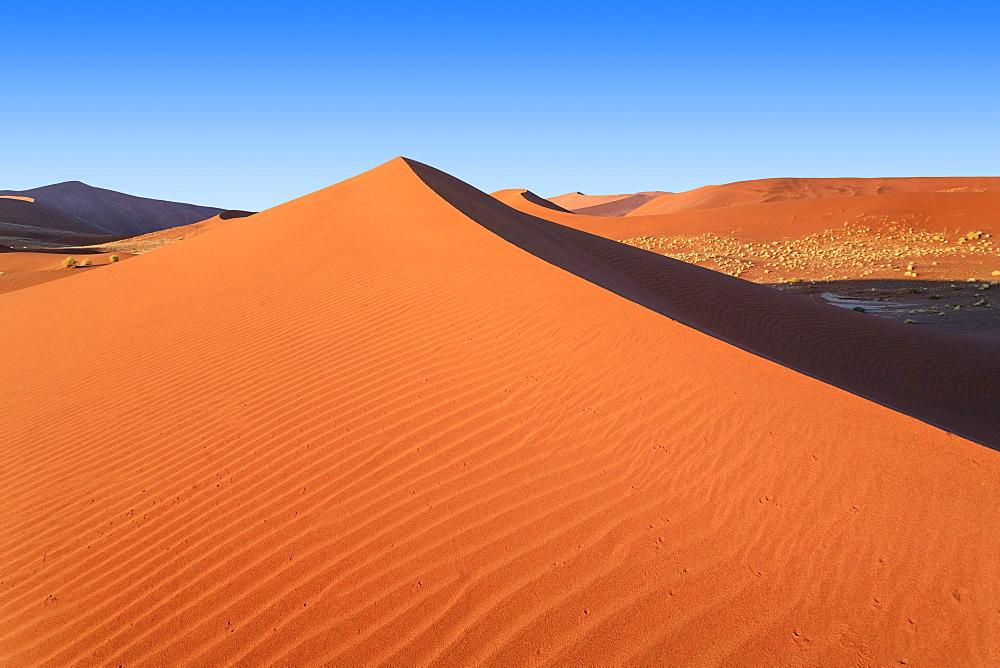 Shadow and light among the sand dunes shaped by wind, Deadvlei, Sossusvlei, Namib Desert, Namib Naukluft National Park, Namibia, Africa