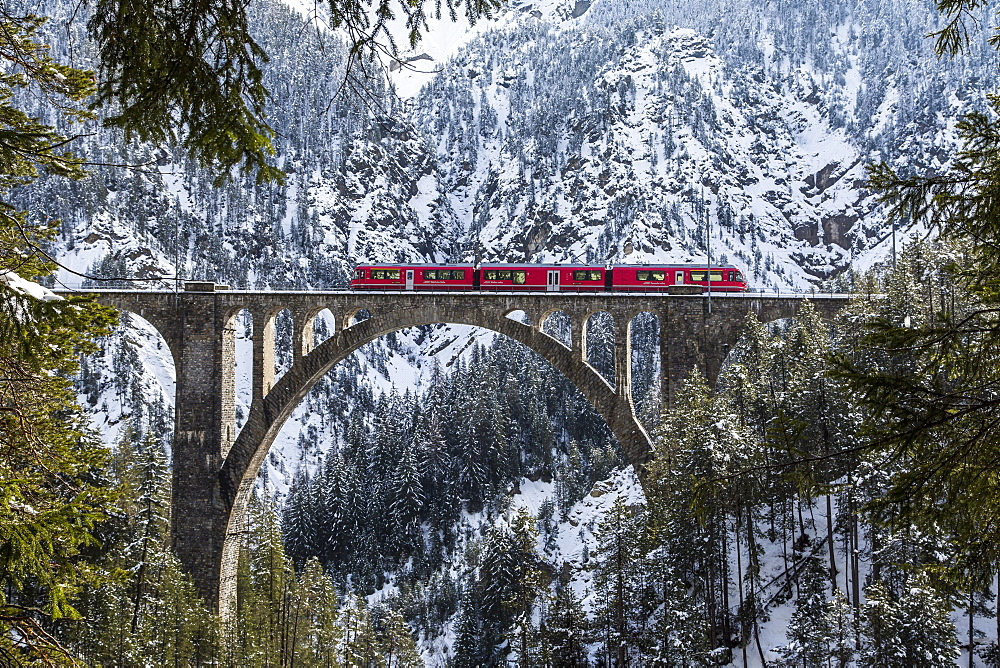 The Bernina Express crossing the Wiesen Viaduct in the Canton of Graubunden, Switzerland, Europe