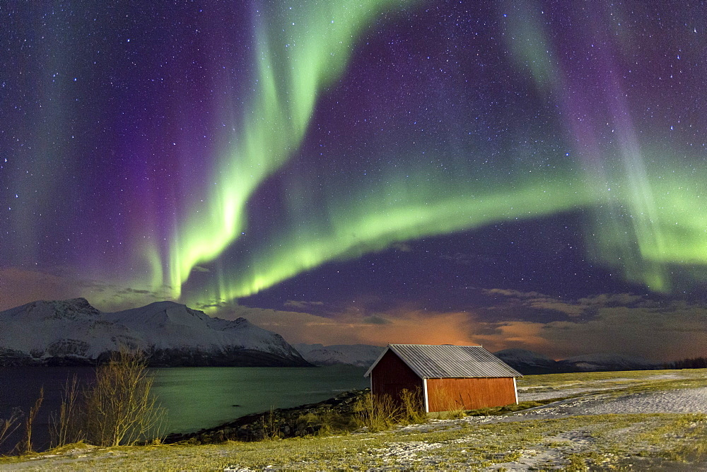 Northern Lights illuminates the wooden cabin at Svensby, Lyngen Alps, Troms, Lapland, Norway, Scandinavia, Europe - 1179-898