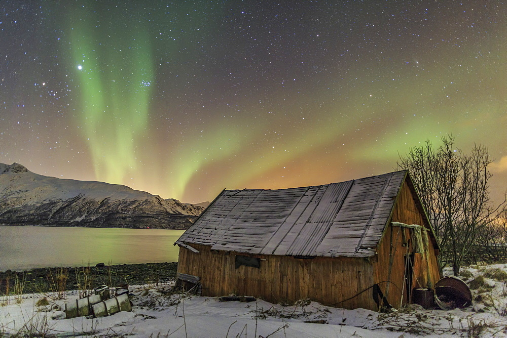 The Northern Lights illuminates the wooden cabin, Svensby, Lyngen Alps, Troms, Lapland, Norway, Scandinavia, Europe