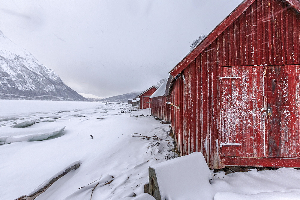 Typical wooden huts in the snowy landscape of Lyngseidet, Lyngen Alps, Tromso? Lapland, Norway, Scandinavia, Europe
