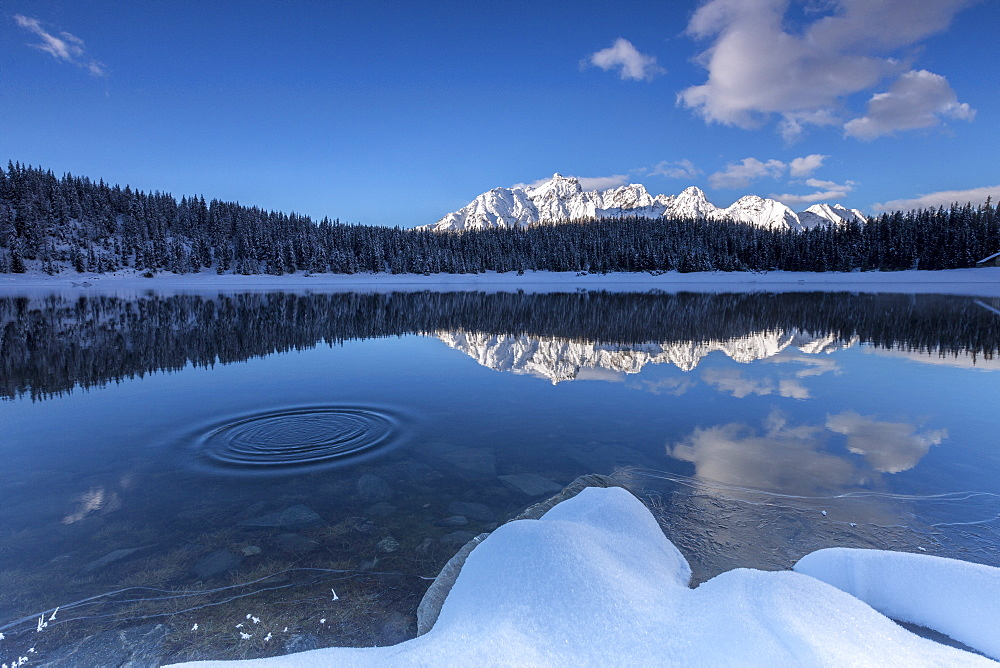Woods and snowy peaks are reflected in the clear water of Lake Palu, Malenco Valley, Valtellina, Lombardy, Italy, Europe