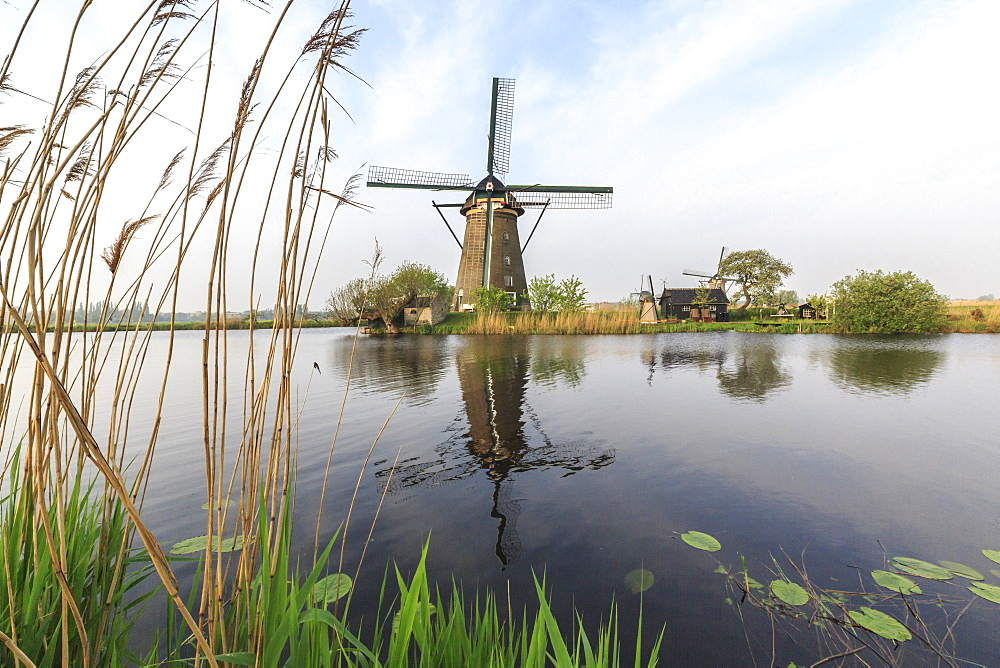 Green grass frames the windmills reflected in the canal, Kinderdijk, Rotterdam, South Holland, Netherlands, Europe
