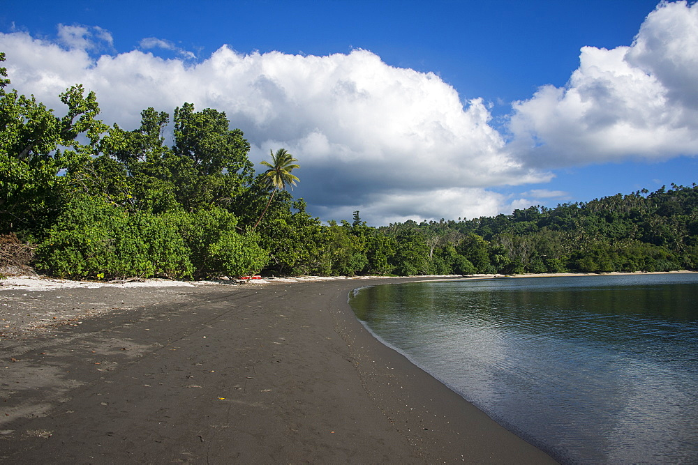 Pretty black sand volcanic beach, Epi Island, Shepherd Islands, Vanuatu, Pacific