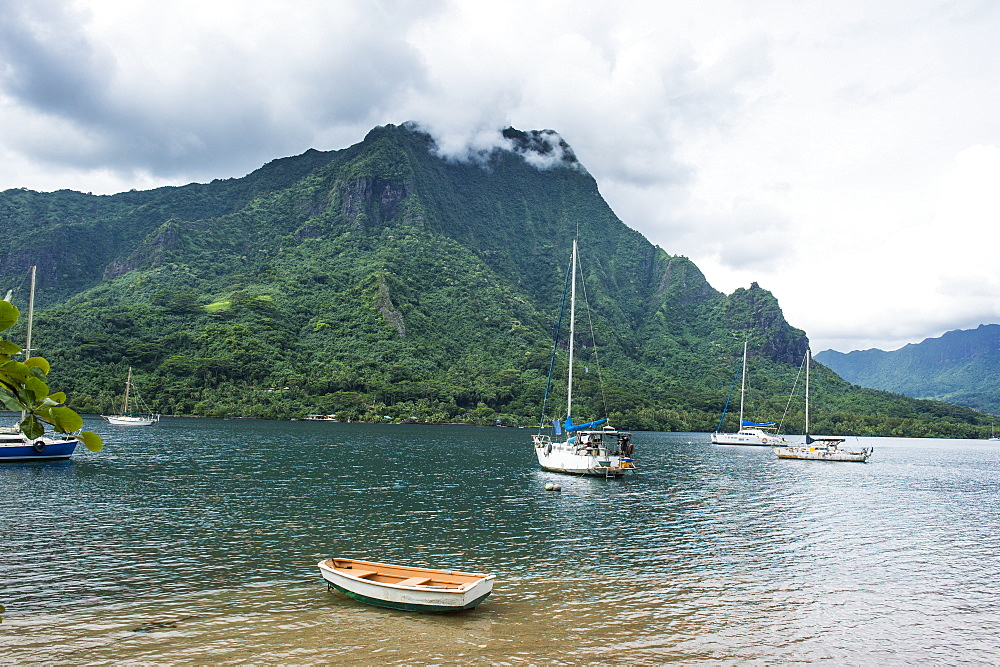 Sailing boat in Cooks Bay, Moorea, Society Islands, French Polynesia, Pacific