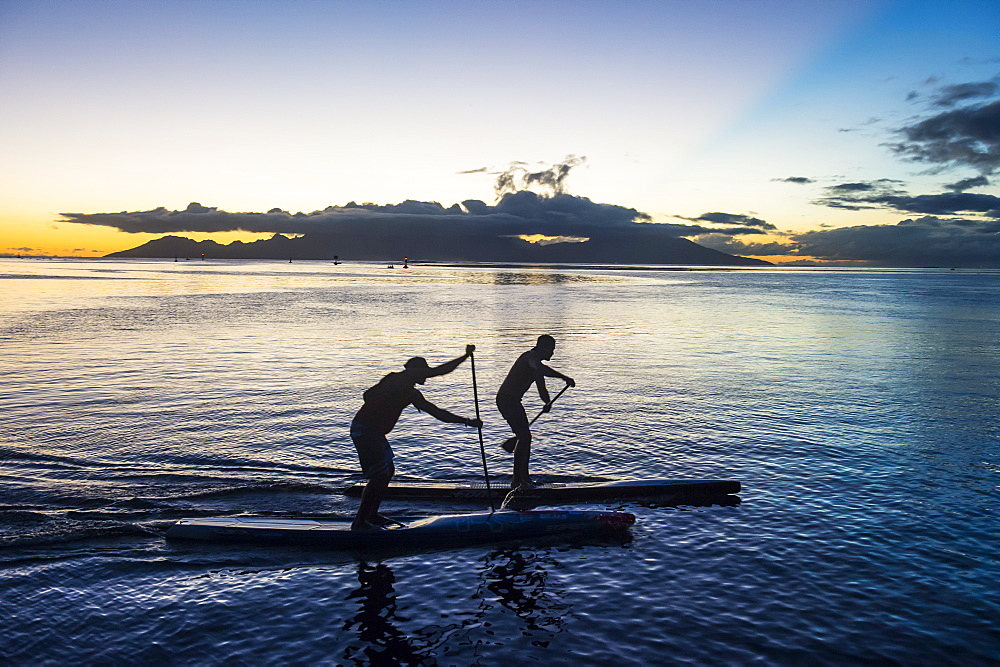 Stand up paddlers working out at sunset with Moorea in the background, Papeete, Tahiti, Society Islands, French Polynesia, Pacific