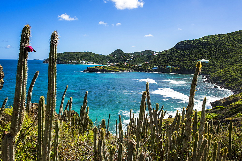 View over the coastline of St. Barth (Saint Barthelemy), Lesser Antilles, West Indies, Caribbean, Central America