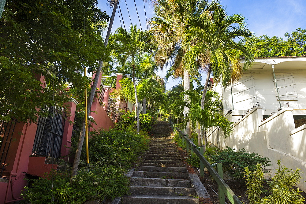 99 steps, little alley in Charlotte Amalie, capital of St. Thomas, US Virgin Islands, West Indies, Caribbean, Central America