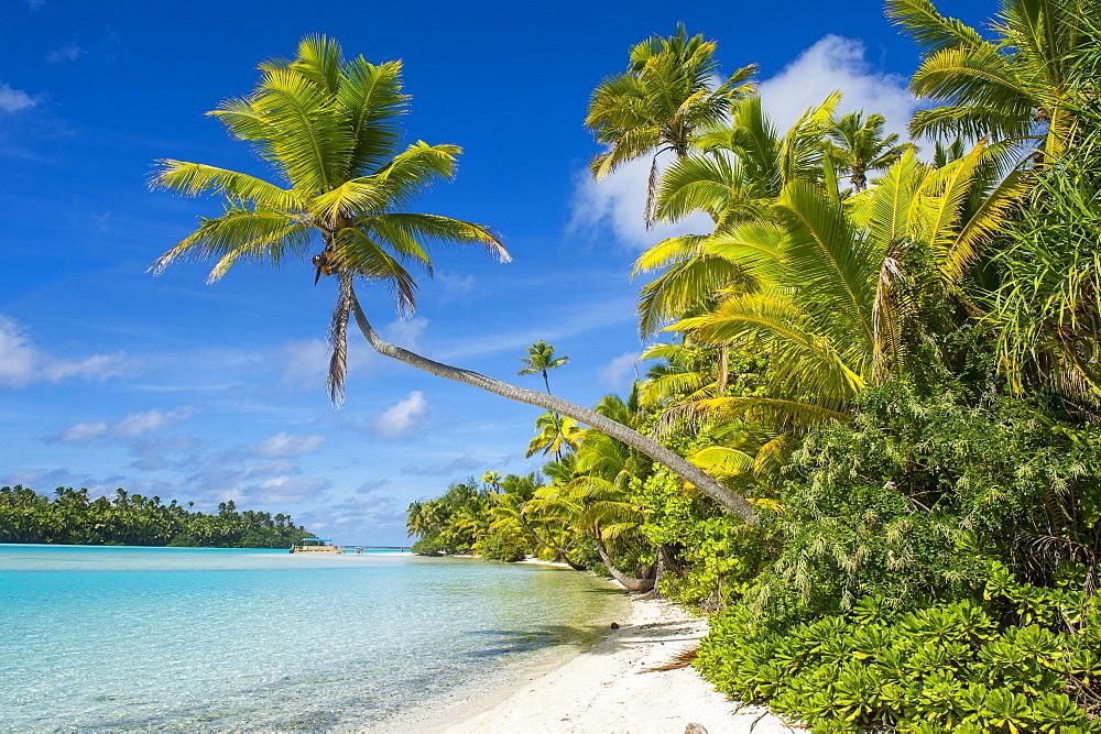 White sand bank in the turquoise waters of the Aitutaki lagoon, Rarotonga and the Cook islands