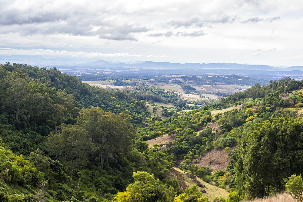 Overlook over the vine region of Hunter valley, New South Wales, Australia