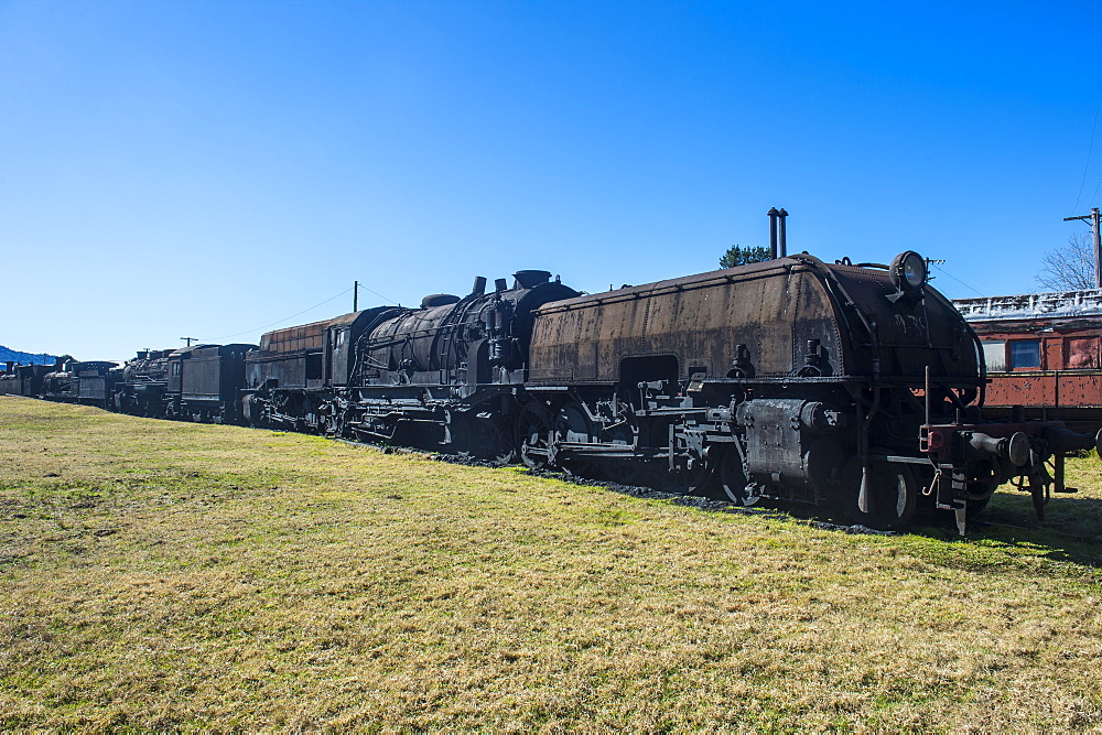 Old steam trains from the Dorrigo railway line, Dorrigo National Park, New South Wales, Australia, Pacific