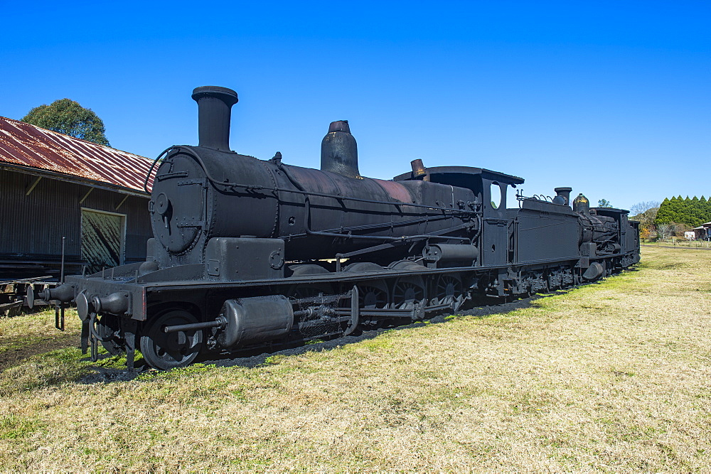 Old steam trains from the Dorrigo railway line, Dorrigo National Park, UNESCO World Heritage Site, New South Wales, Australia, Pacific