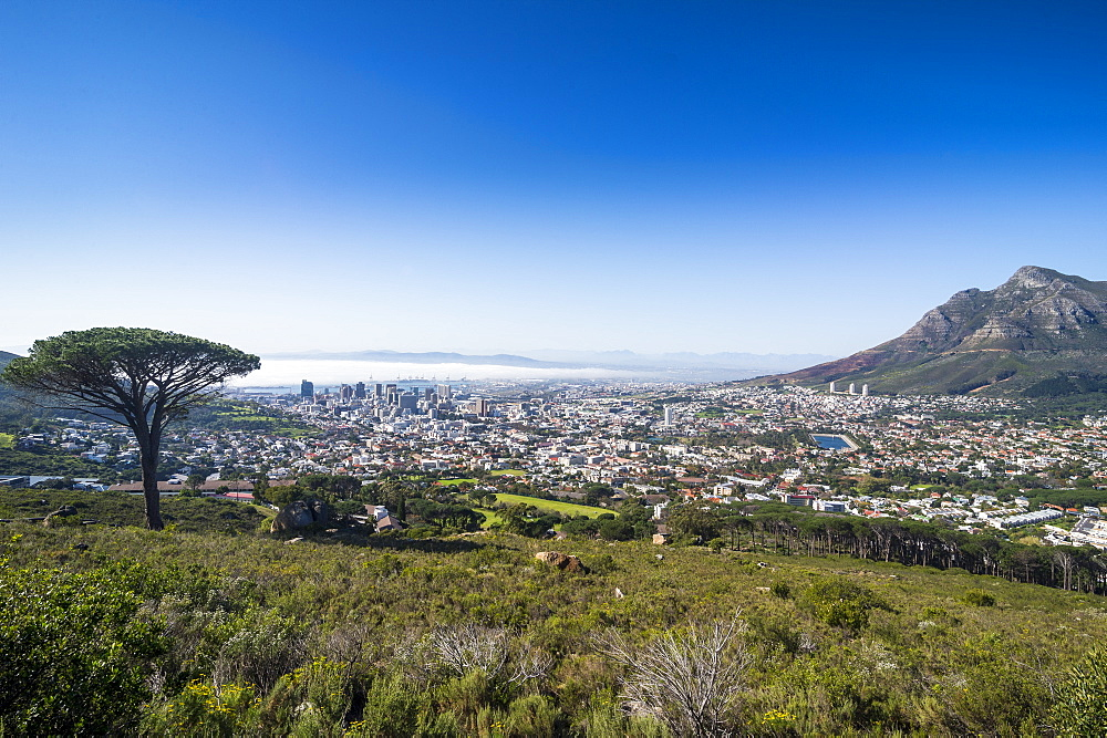 Overlook over Cape town, South Africa