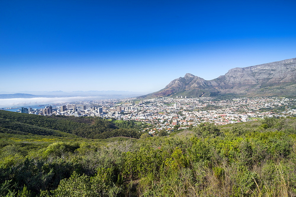 View over Cape Town, South Africa, Africa