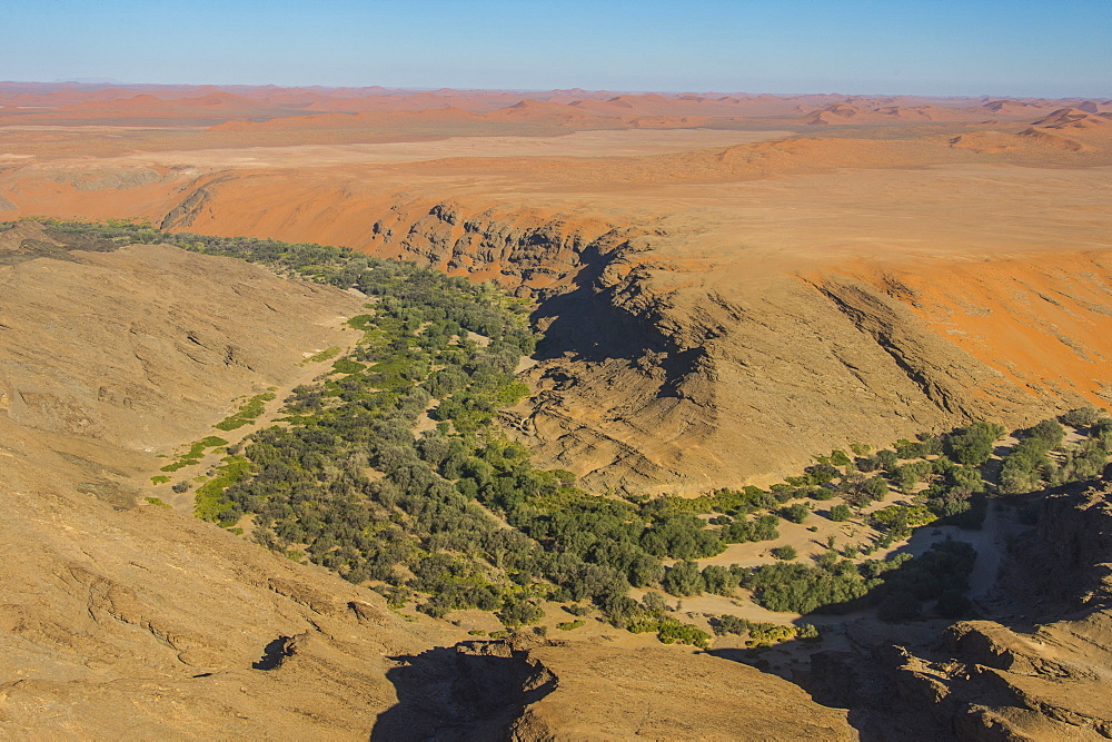 Aerial of a green canyon on the edge of the Namib desert, Namibia