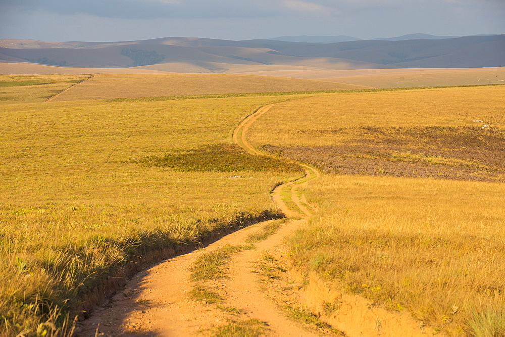 Dusty road leading through the Nyika National Park, Malawi, Africa