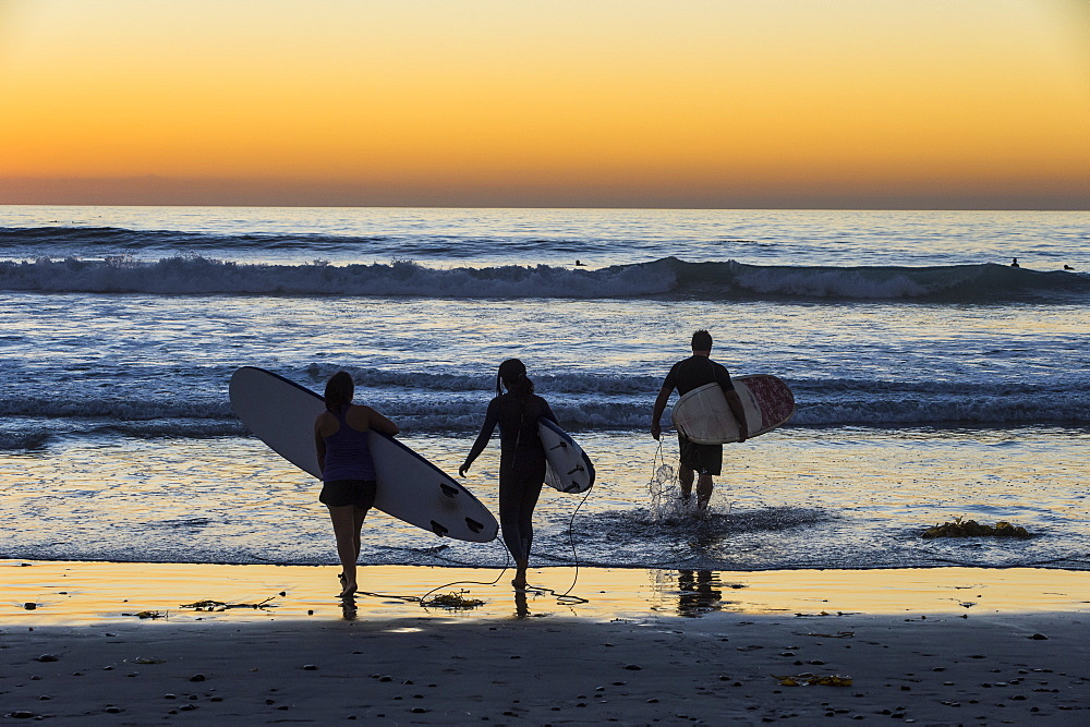Surfers walking with their surfboards in the ocean at sunset, Del Mar, California, United States of America, North America