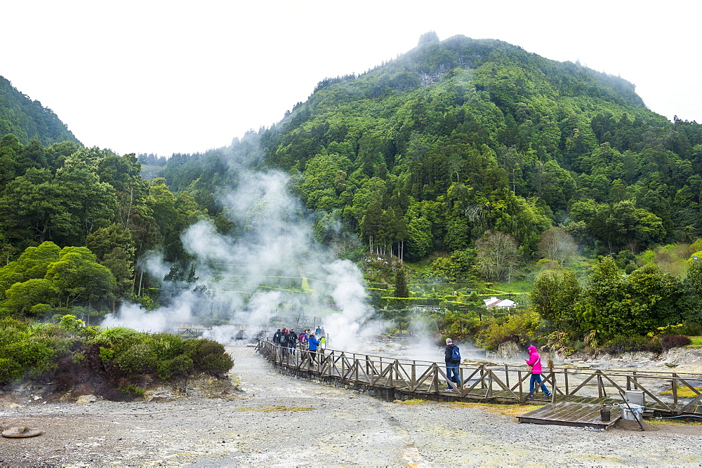 Fumaroles of Furnas Lake, Island of Sao Miguel, Azores, Portugal, Atlantic, Europe