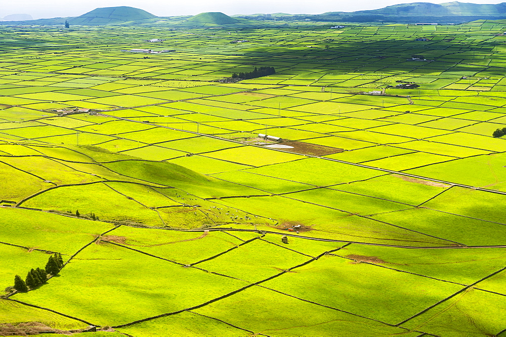 Serra do Cume Viewpoint overlooking the patchwork of green pastures, Island of Terceira, Azores, Portugal, Atlantic, Europe - 1184-2516