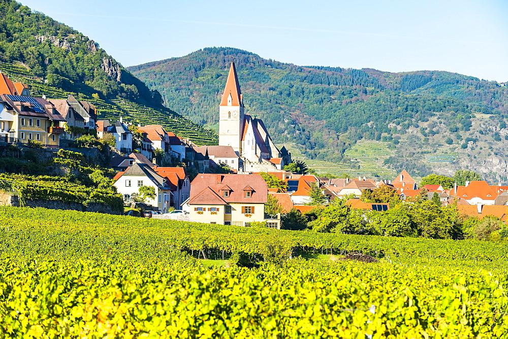Church Pfarrkirche Mariae Himmelfahrt in Weissenkirchen in the vineyards on the Danube, Wachau, UNESCO World Heritage Site, Austria, Europe