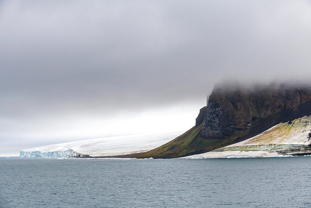 Massive bird cliff, Champ Island, Franz Josef Land archipelago, Russia