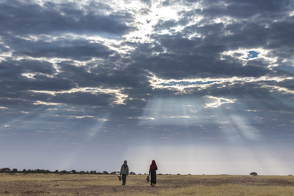 Beduin children walking under a dramatic sky in the Sahel, Chad, Africa - 1184-3070