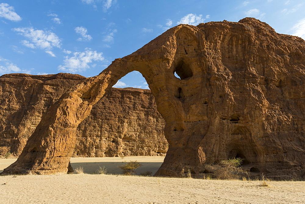 Elephant rock arch, Unesco world heritage, Ennedi plateau, Chad, Africa - 1184-3119