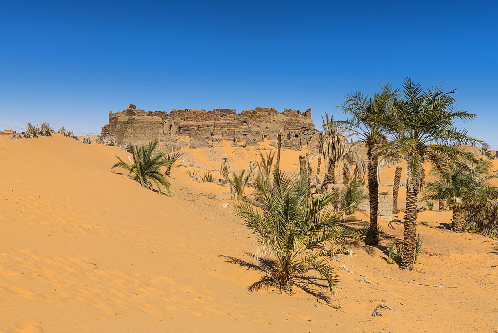 Old ksar, old town in the Sahara Desert, near Timimoun, western Algeria, North Africa, Africa