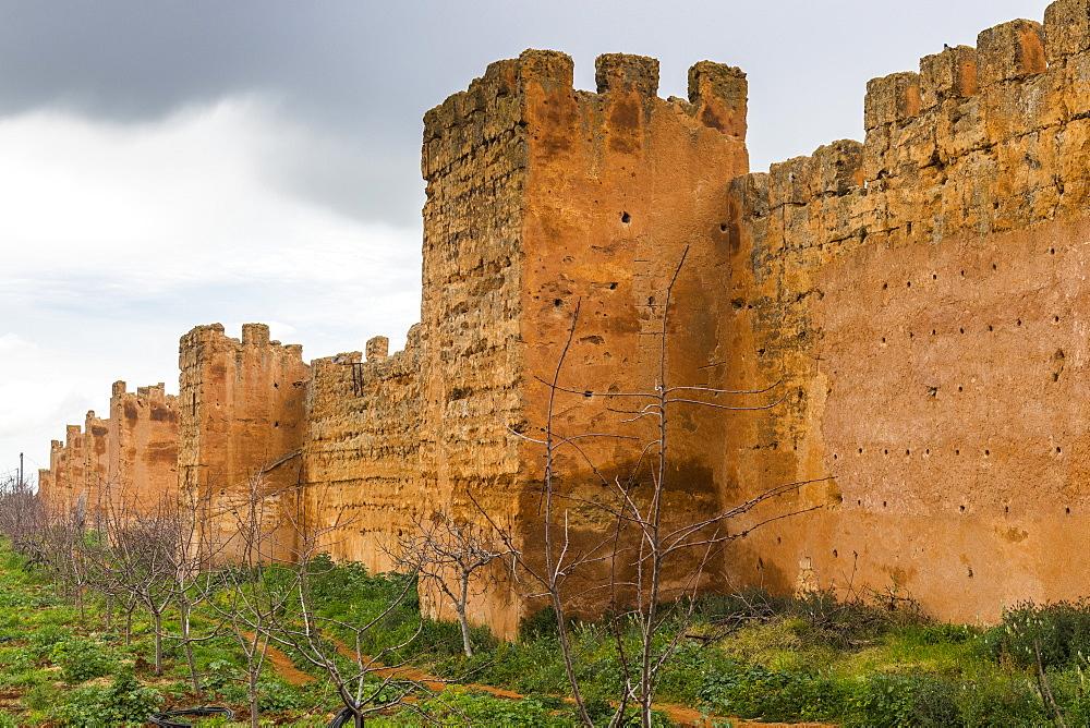 Outer castle wall, Mansourah castle, Tlemcen, Algeria, North Africa, Africa