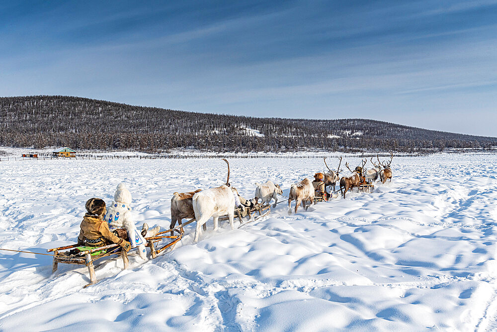 Friendly Evenc family on sledges pulled from reindeers, Oymyakon, Sakha Republic (Yakutia), Russia, Eurasia