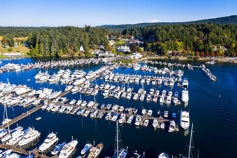 Aerial of Roche harbor, San Juan islands, Washington State, United States of America, North America