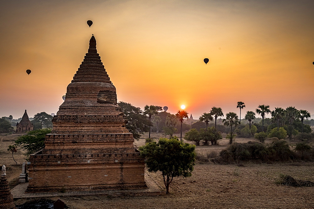Hot air balloons over Bagan at sunrise, Bagan (Pagan), Myanmar (Burma), Asia