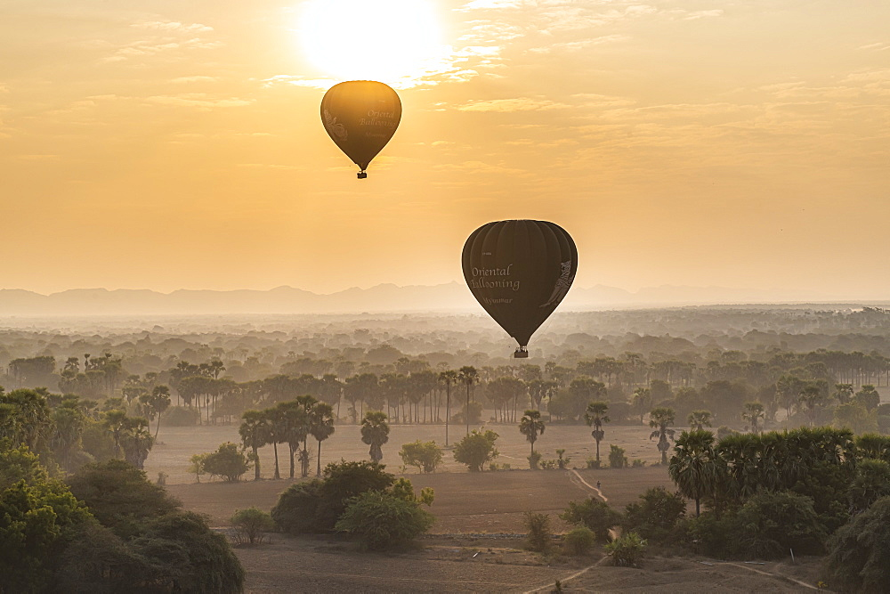 Hot air balloons at sunrise over temples of Bagan (Pagan), Myanmar (Burma), Asia