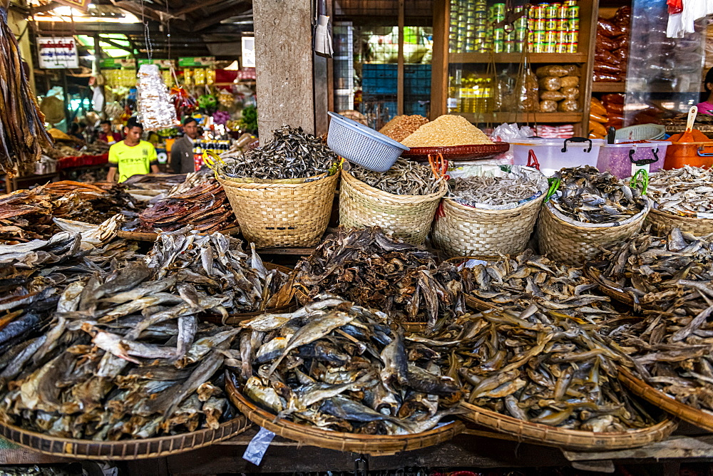 Dried fish on the market of Myitkyina, Kachin state, Myanmar (Burma), Asia
