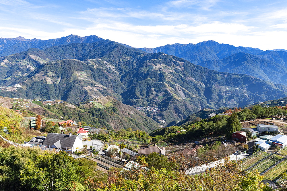 Tea plantations in the picturesque highlands of Nantou County, Taiwan
