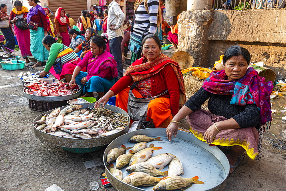 Colourfully dressed women vendors selling fish, Ima Keithel women's market, Imphal, Manipur, India, Asia