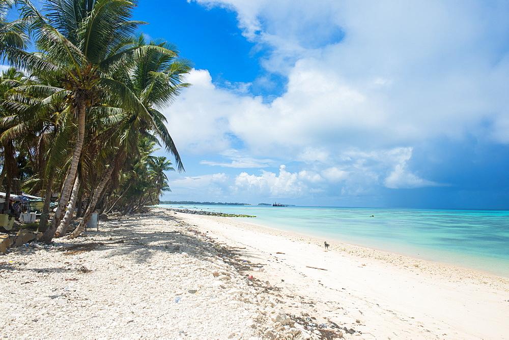 The beautiful lagoon of Funafuti, Tuvalu, South Pacific
