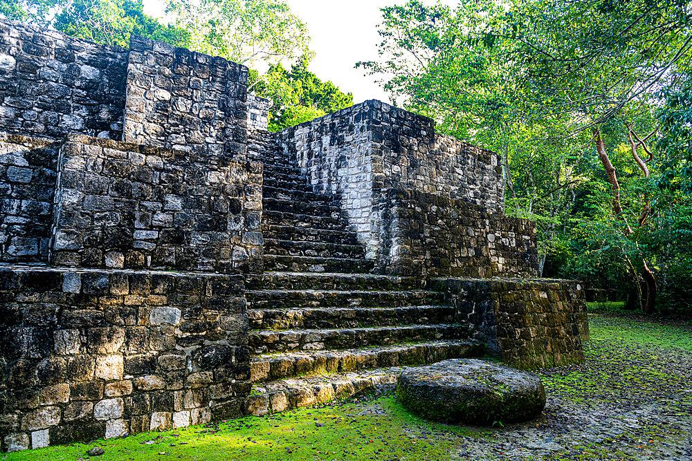 Unesco world heritage site Calakmul, Campeche, Mexico - 1184-5341