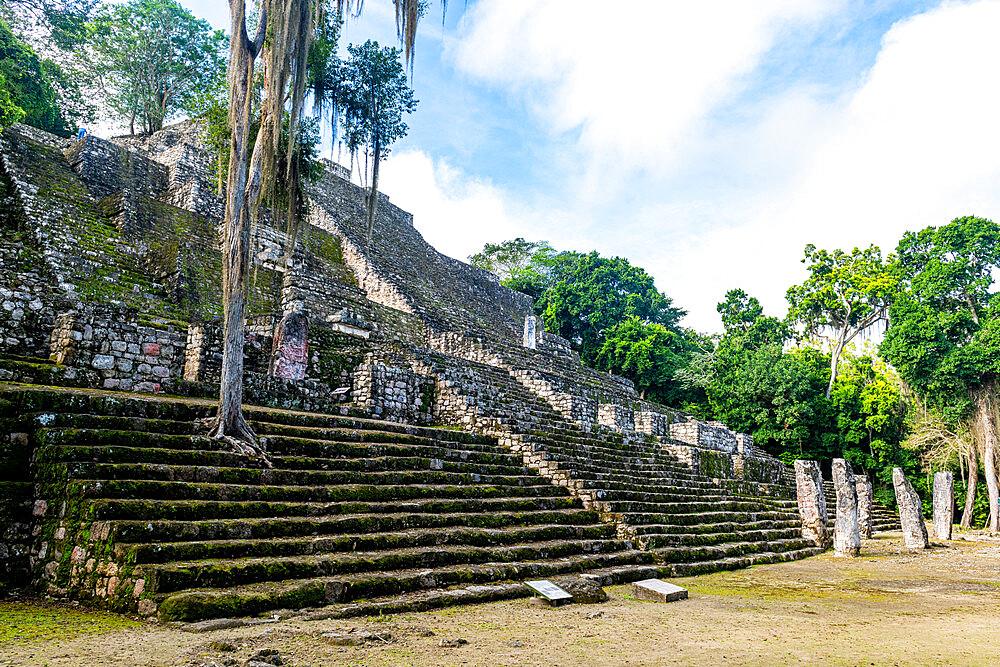 Unesco world heritage site Calakmul, Campeche, Mexico - 1184-5345
